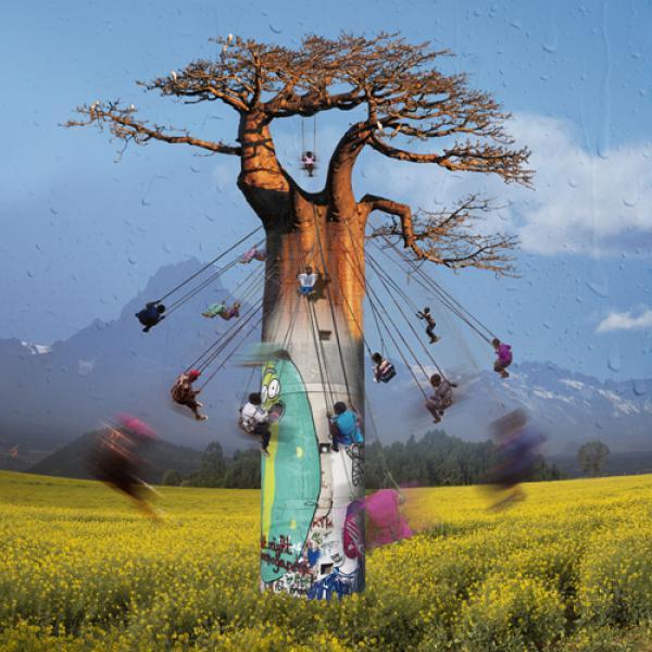 Envolée autour du Baobab