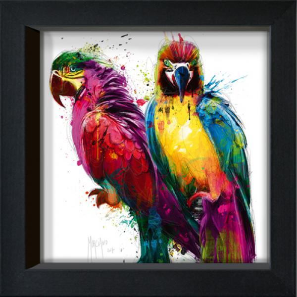 Tropical Color I