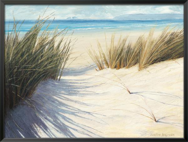 Dune Pathway