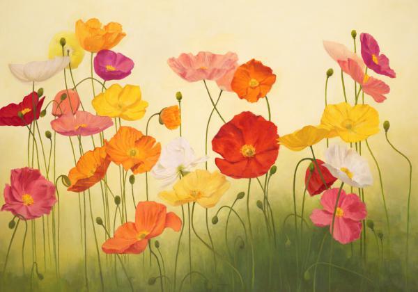 Sunlit Poppies