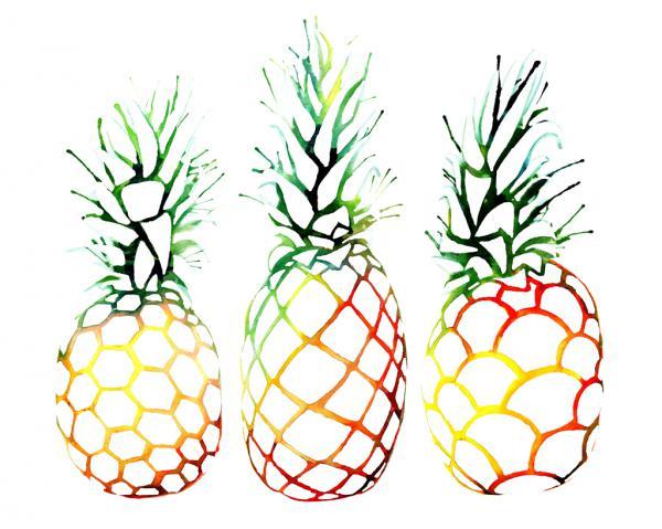 Retro Pineapples