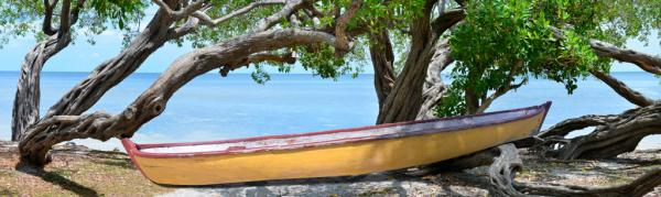 Yeloow Bird Boat