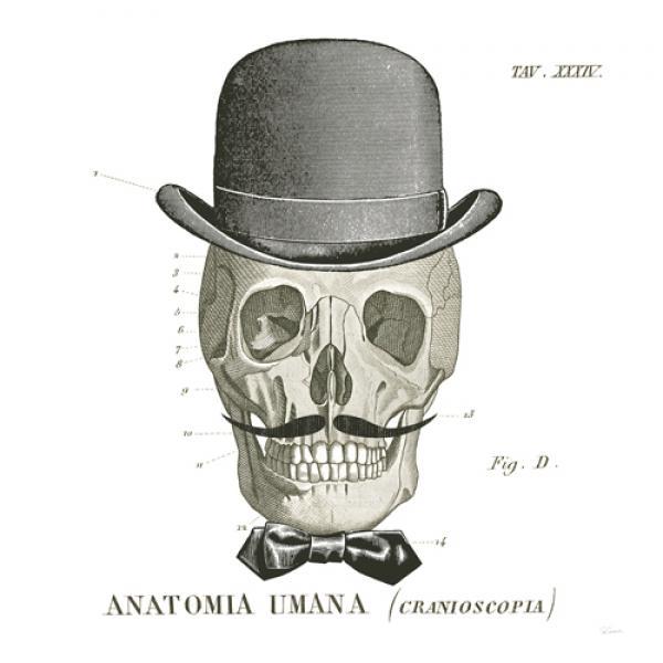 Dandy Bones IV