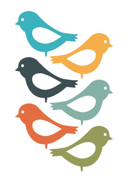 Playful Birds