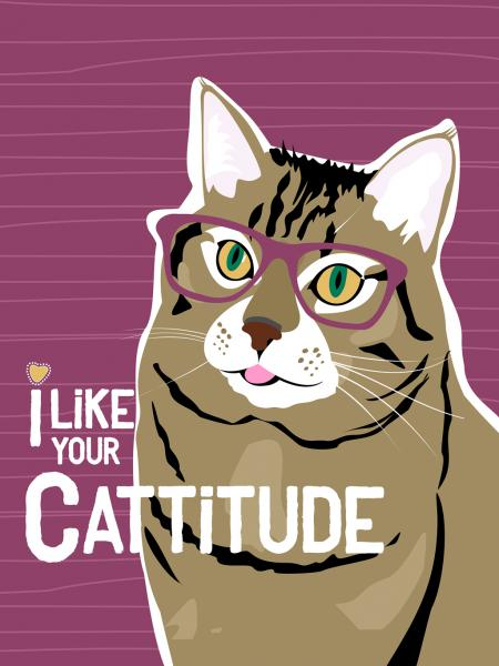 I Like Your Cattitude
