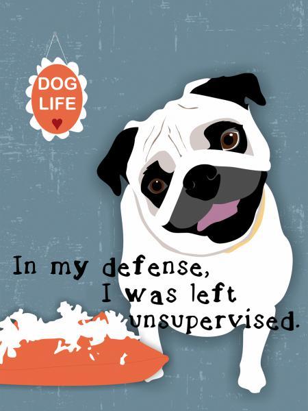 Pug Dog Life
