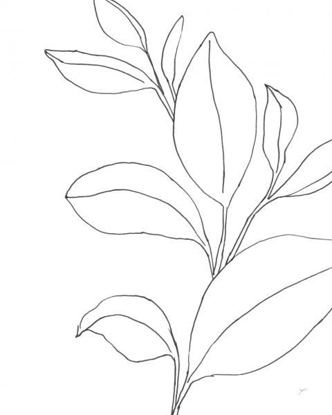 Line Leaves II
