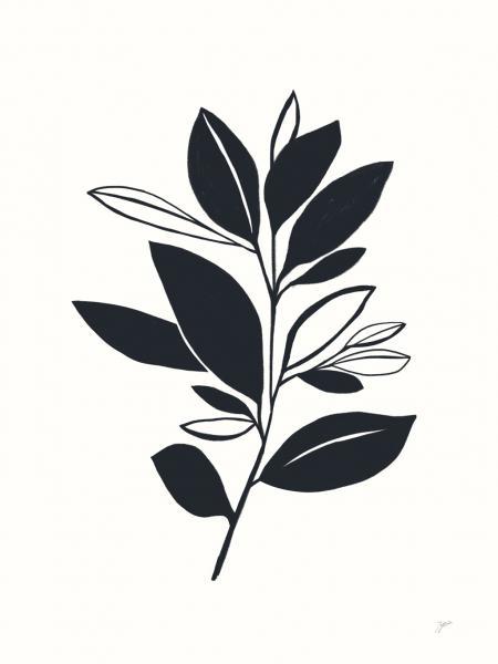 Bay Leaves II