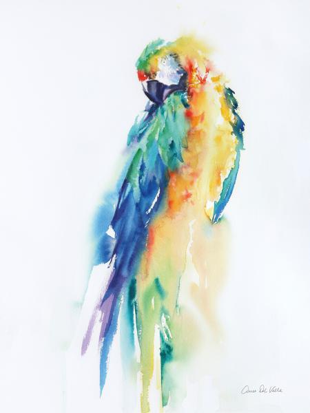 Colorful Parrots II