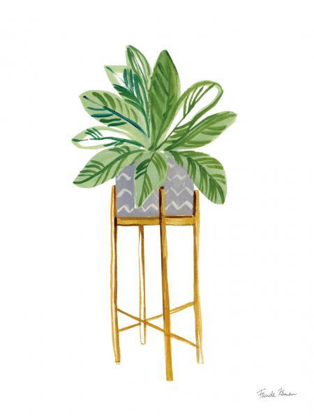 Green House Plants I