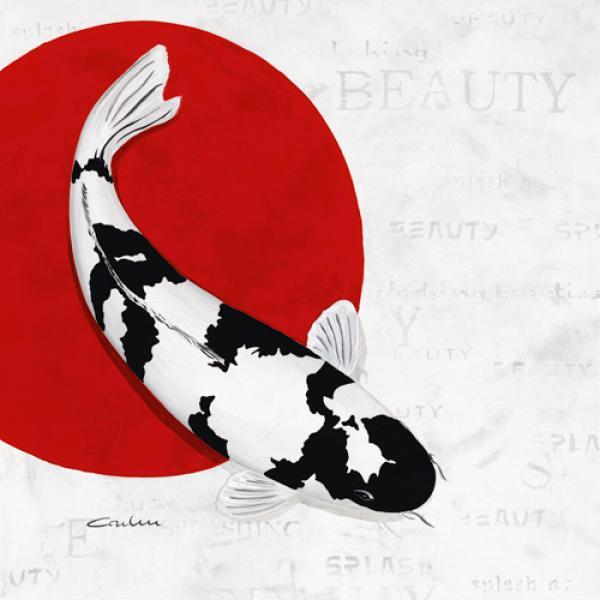 Splashing Beauty Shiro Utsuri