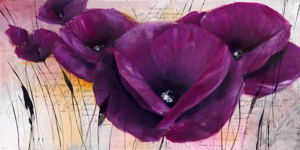 Pavot violet II